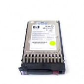Hewlett-Packard 300GB 10K 6G DP SFF W/Tray 518194-002