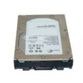 Seagate Hard Drive 300GB 4GB FIBRE CHANNEL 15K RPM ST3300655FCV